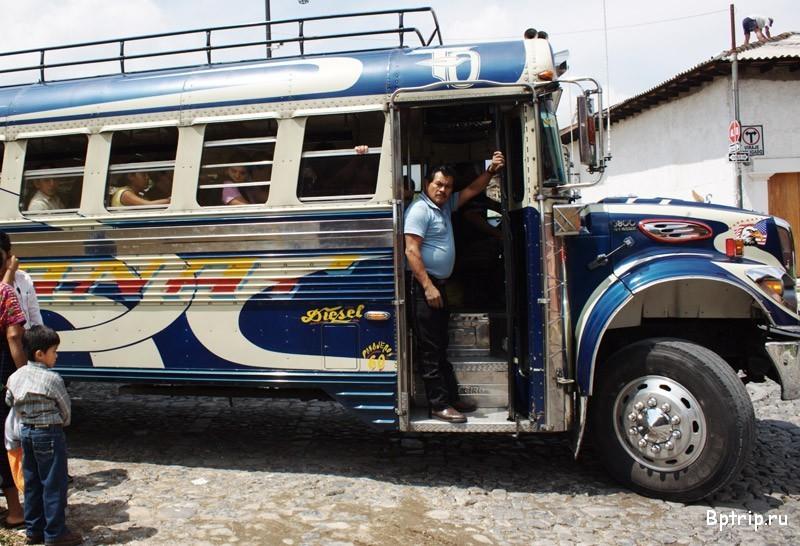 Видна красивая попа в автобусе фото 474-558