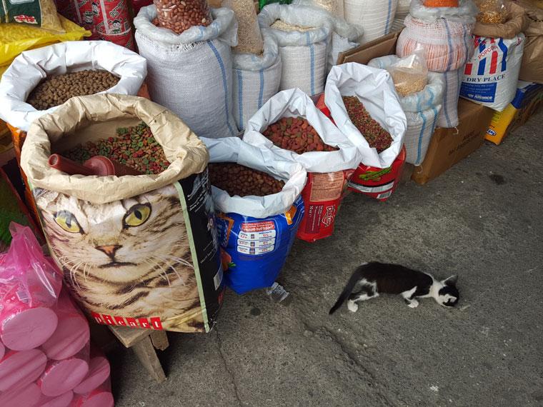 0c4646b47de9af Шопинг в Батуми - где купить еду, одежду и сувениры (с ценами)